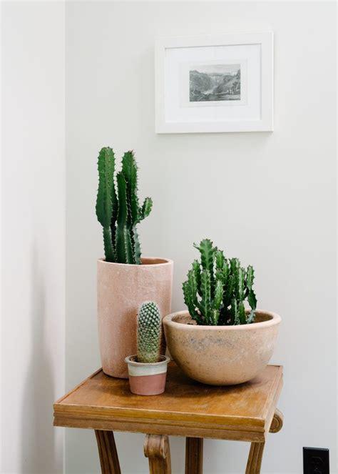indoor plants home decor ideas planters hanging plants