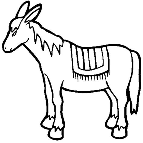mexican donkey coloring page donkey drawing clipart best