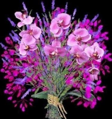 fiori in francese mazzo di fiori in francese gpsreviewspot