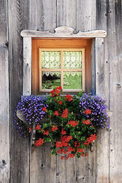 fioriere per davanzale finestra finestre fiorite porte e finestre finestra