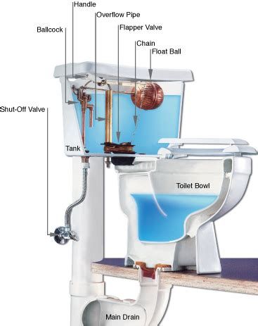 how a toilet works and why it breaks prestige plumbing