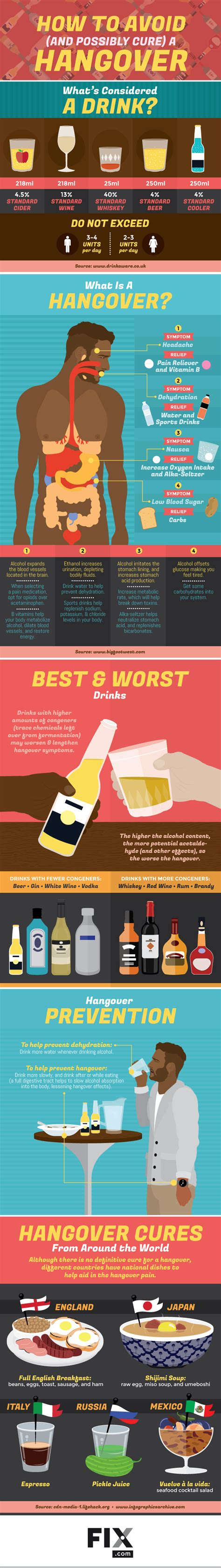 8 Tips On Preventing A Hangover by How To Avoid A Hangover Infographic Visualistan