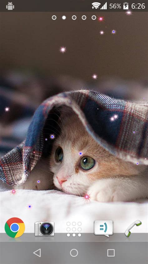 live wallpaper cat apps android cute cat live wallpaper android apps on google play