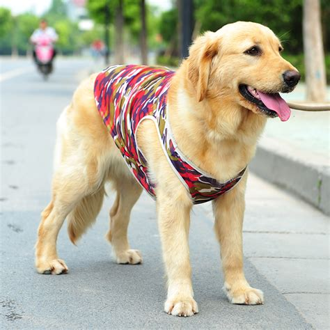 golden retriever jacket rottweiler pet clothes promotion shop for promotional
