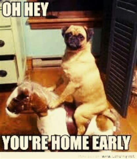 10 best images about you re home early on