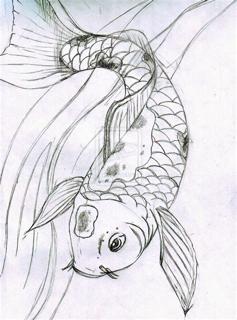 Drawing Koi Fish by Koi Fish Sketch By Nymphetamine91 On Deviantart Images