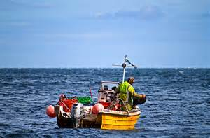 find a fishing boat uk and ireland fishing boat 169 william starkey geograph britain and ireland