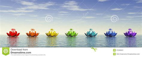 lotus flower chakra chakra lotus image stock image 31296501