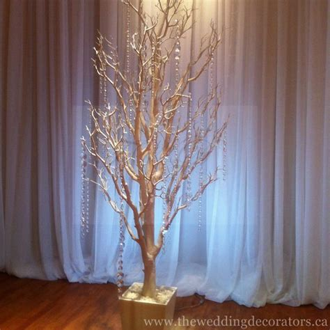 Wedding Backdrop Trees by Wedding Table Backdrops Table Pictures