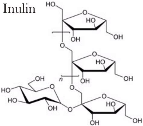 Obat Herbal Wmp wmp herbal pelangsing paling mujarab masa kini obat
