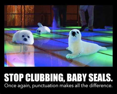Baby Seal Meme - 50 funniest puns in the history of the internet