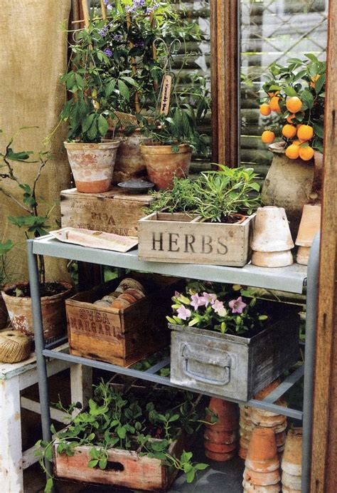 shed benches best 25 garden shelves ideas on pinterest plant shed