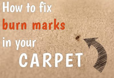 how to fix a burnt rug fix lovely how to fix burn marks in your carpet