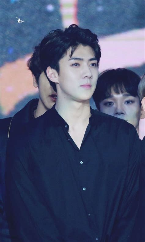 biography of exo sehun 506 best images about oh sehun on pinterest