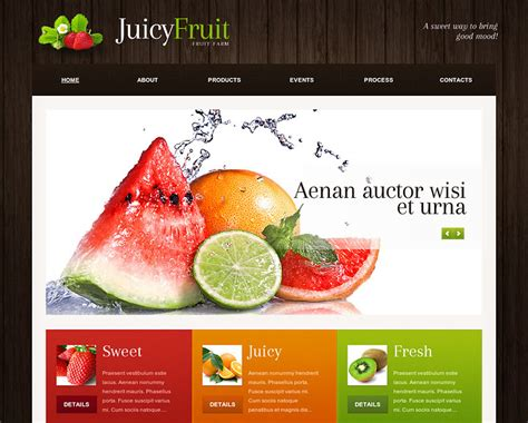 for sale wordpress website template best designs award