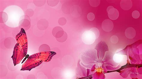 wallpaper awan pink bright flower wallpapers wallpaper cave