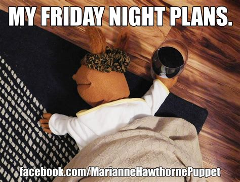 friday night plans wine meme funny comedy single lonely