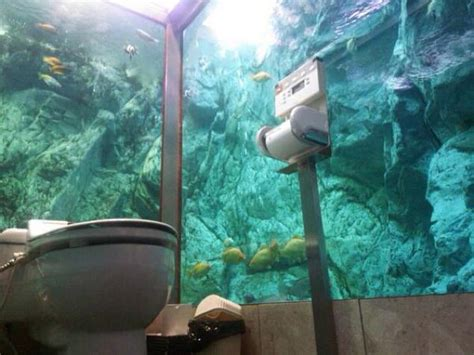 amazing places  pee  poop  japan kotaku