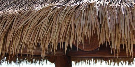 Tiki Grass Thatch Tiki Hut Design Landscaping Network