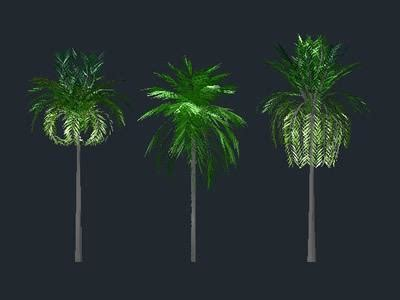 palm trees  dwg model  autocad designs cad