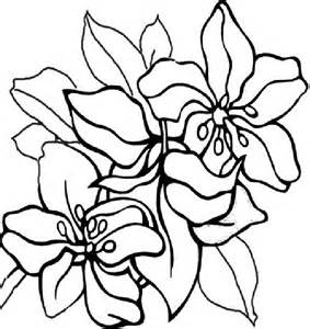 coloring pages of mexican flowers images