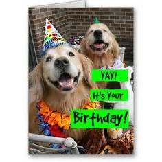 golden retriever golden oldie birthday card by augiedoggystore quot happy birthday to a