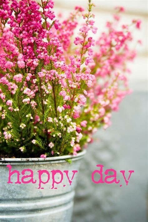 happy day flowers best 25 happy day ideas on happy happiness