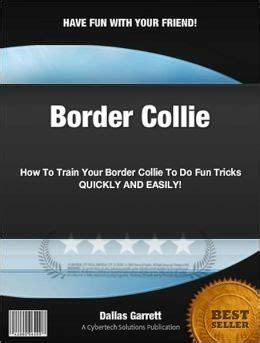 how to your to do cool tricks how to your border collie to do tricks by dallas garrett 2940012574954
