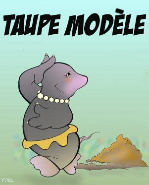 Taupe Modele