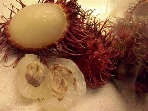 fruit with spikes pin by nathalie abejero on cambodia khmer food
