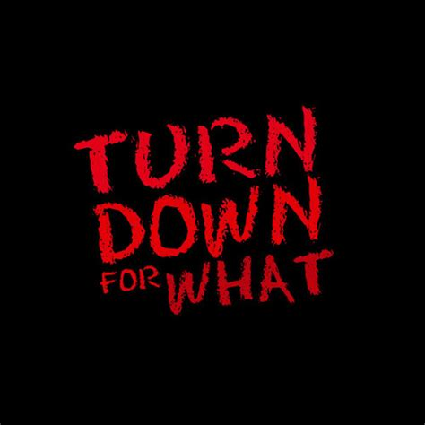 download mp3 dj snake turn down for what dj snake vs upon a burning body turn down for what