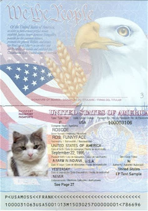 fake us passport template