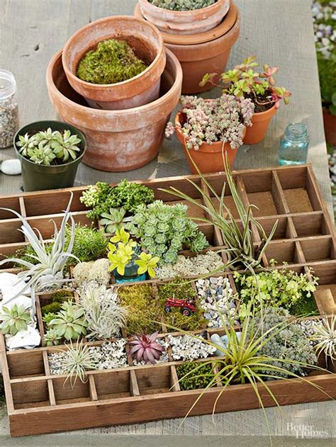 miniature gardens ideas miniature garden ideas for every taste