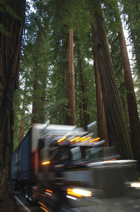 the redwood curtain parting the redwood curtain high country news