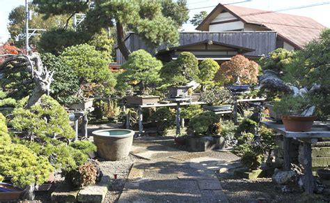 japan international bonsai tour exploration autumn 2013 part 1 valavanis bonsai blog