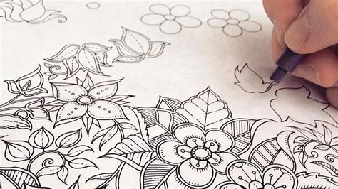 coloring books like the secret garden china s bestseller of 2015 was a coloring book for adults