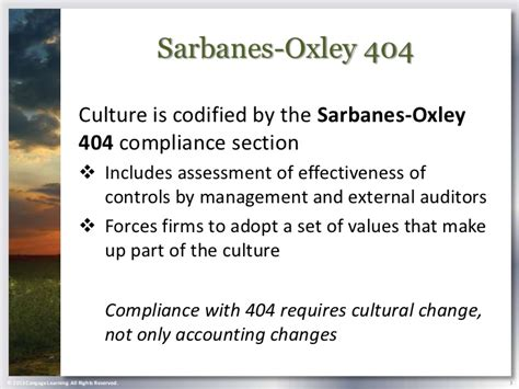 sarbanes oxley section 404 compliance chapter 7