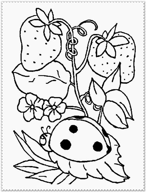 free coloring pages of spring bear