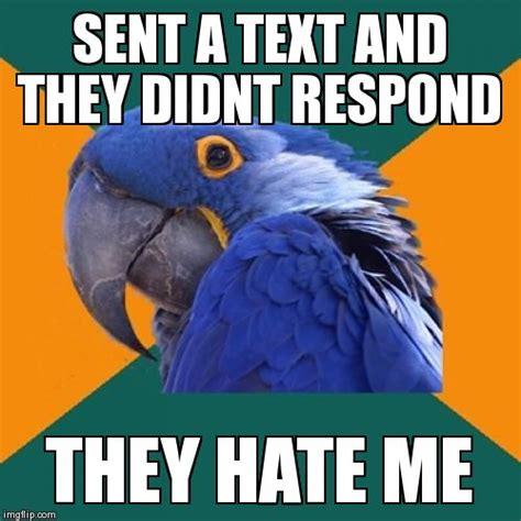 Paranoid Meme - paranoid parrot meme imgflip