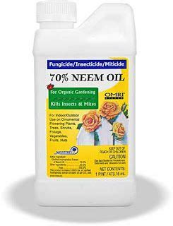 neem oil for bed bugs 17 best images about garden on pinterest gardens neem