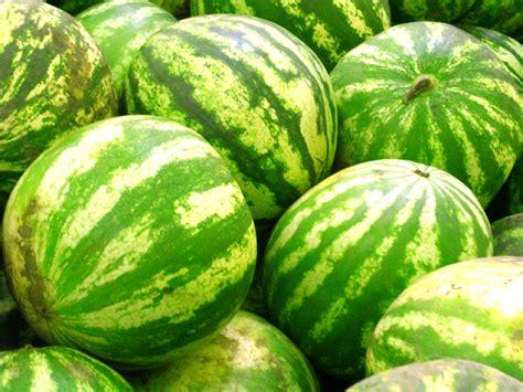 Water Melon watermelon mint cooler slushie west of