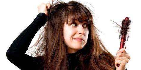 Sho Makarizo Untuk Rambut Rontok 16 cara mengatasi rambut rontok parah pada wanita 187 omsehat