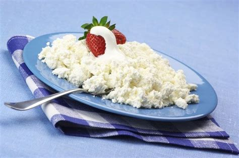 is cottage cheese for diabetics 88 best images about diabetes friendly snacks on