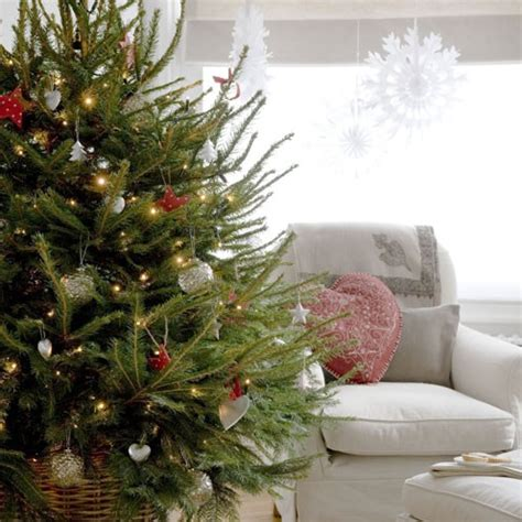 where to put a christmas tree with a fireplace what type of tree should you buy decor housekeeping