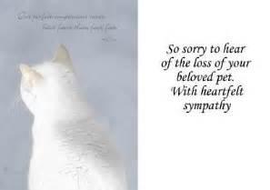 pet condolence quotes quotesgram