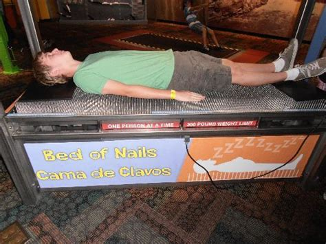 Bed Of Nails Reviews by Bed Of Nails Picture Of Arizona Science Center