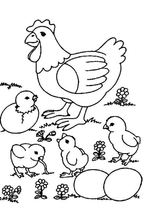 pollito en su cascaron colouring pages dbiujo de gallina con sus pollitos reventando del cascaron