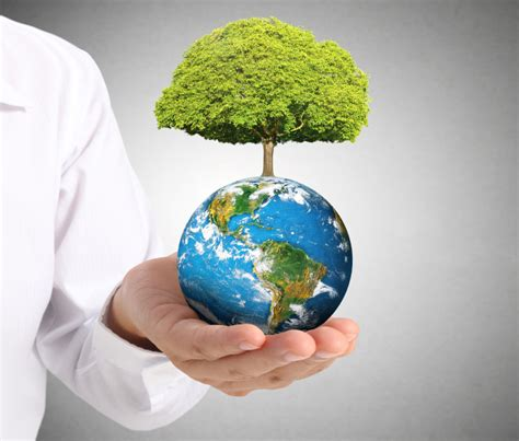 Mba In Environmental Management by Environment Management Mba In Environment Management