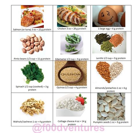 8 protein rich foods nutrition and a child with ds part 2