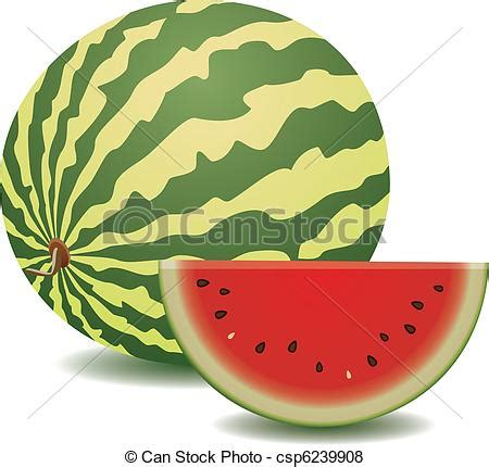 Semangka Vektor vector of vector watermelon and a slice csp6239908